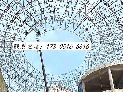 樟树中央大街球形网架
