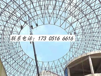 浙江樟树中央大街球形网架